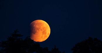 Super Flower Blood Moon Graces the Skies Over Powell County